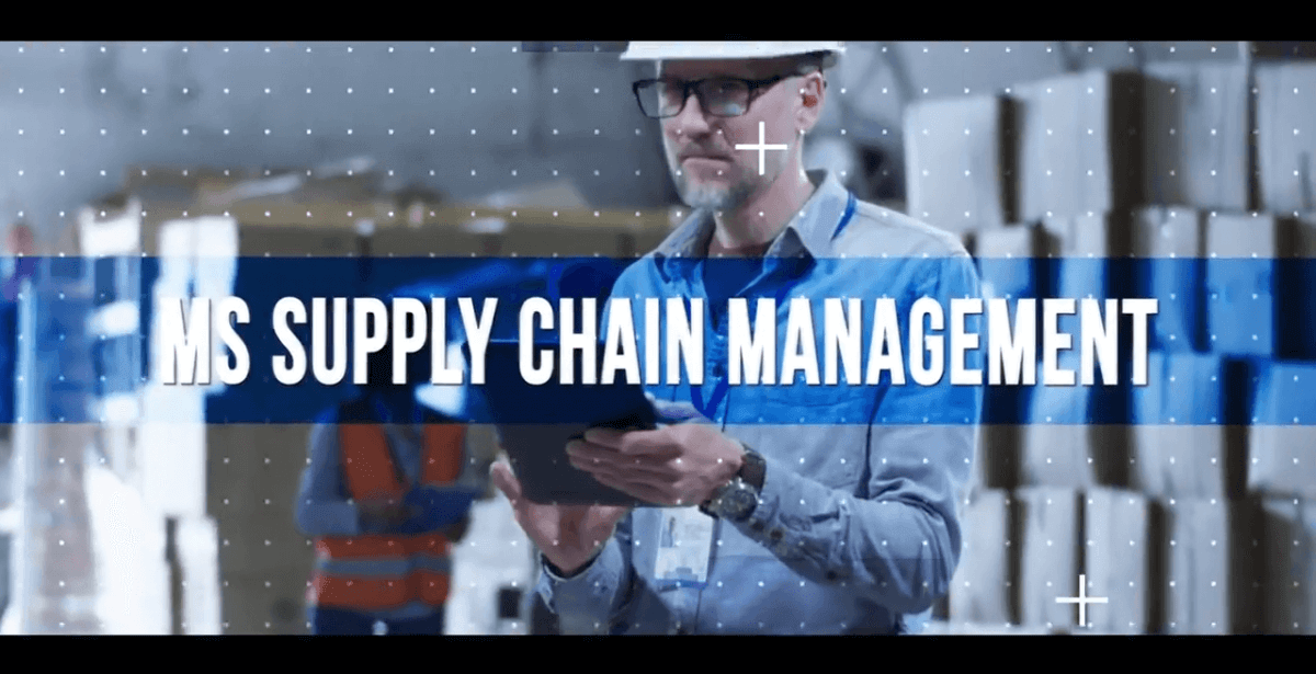 Develop and manage global supply chain strategies